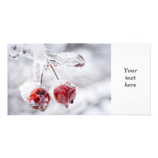 Frozen crab apples on icy branch photo card template