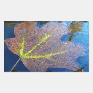 Frozen Fall Maple Leaf Sticker