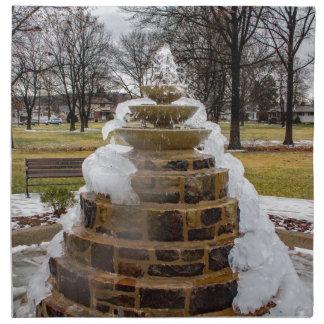 Frozen Fountain Printed Napkins
