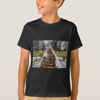 Frozen Fountain T-Shirt