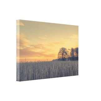 Frozen grass in the sunrise canvas print