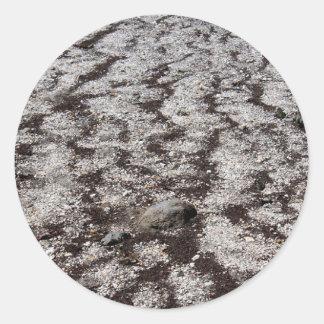 Frozen Ground Classic Round Sticker