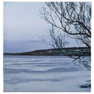 Frozen Lake Napkin
