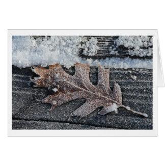 """Frozen Leaf"" Greeting Card"