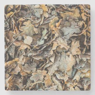 Frozen leaves stone coaster
