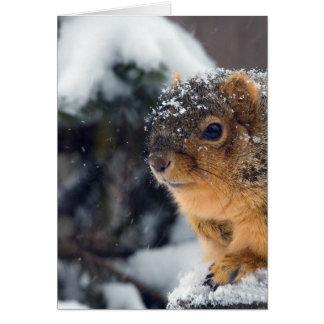 Frozen Nuts Get Well Soon Card