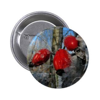 frozen rose hip pinback button