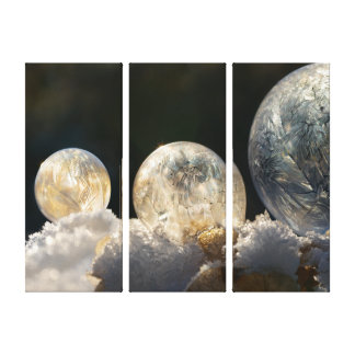 Frozen Soap Bubbles Ice Crystal Cool Winter Photo Canvas Print