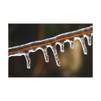 Frozen Solid Stretched Canvas Print