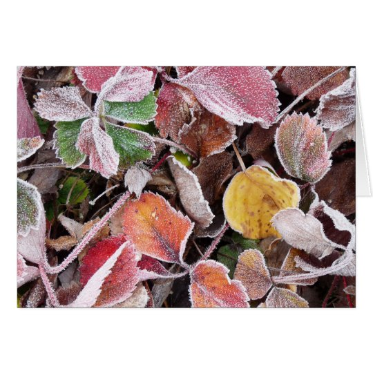 Frozen Strawberries Card