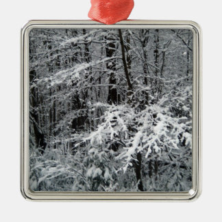 Frozen Tree Branches to Decorate a Christmas Tree Metal Ornament