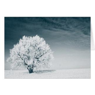 Frozen tree on winter field and blue sky card