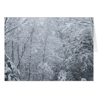 Frozen Trees-Blank Card
