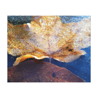 Frozen Yellow Maple Leaf Autumn Nature Canvas Print