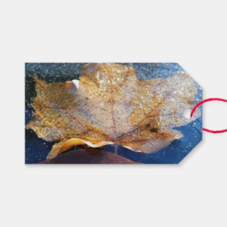 Frozen Yellow Maple Leaf Autumn Nature Gift Tags