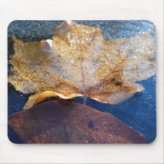 Frozen Yellow Maple Leaf Autumn Nature Mouse Pad