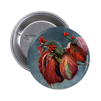 Fruit and Autumn Leaves of Flowering Dogwood Pins