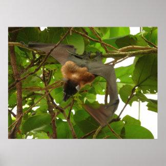 Fruit Bat Print