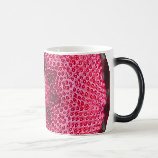 FRUIT BOHEMIAN KALEIDOSCOPIC GEOMETRIC MANDALA MAGIC MUG