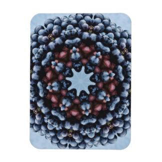 FRUIT BOHEMIAN KALEIDOSCOPIC GEOMETRIC MANDALA RECTANGULAR PHOTO MAGNET