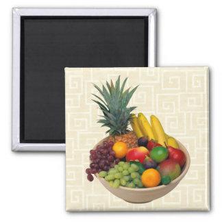Fruit Bowl Magnets