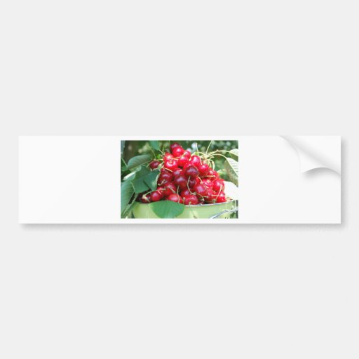 Fruit Cherries Sweet Dessert Destiny Gifts Bumper Sticker