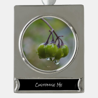 Fruit of Clarity Silver Plated Banner Ornament