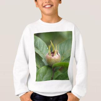 Fruit of the common medlar sweatshirt