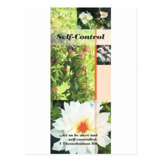Fruit of the Spirit self control Postcard