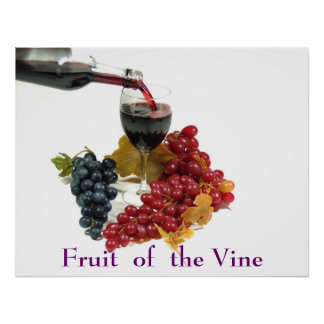 Fruit Of The Vine Poster