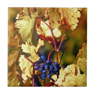 Fruit of the Vine Small Square Tile