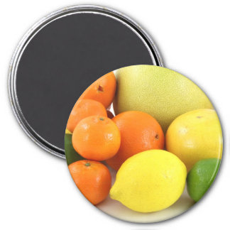 Fruit, Orange, Lemon and Melon Refrigerator Magnet