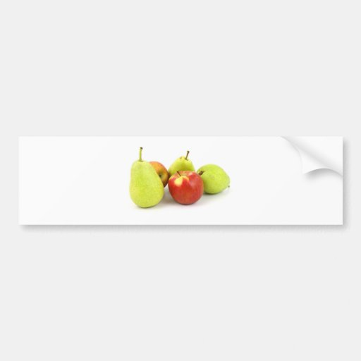 Fruit Salad Food Business Occupations Professional Bumper Stickers