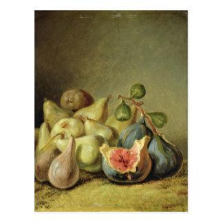 Fruit Still Life Postcard