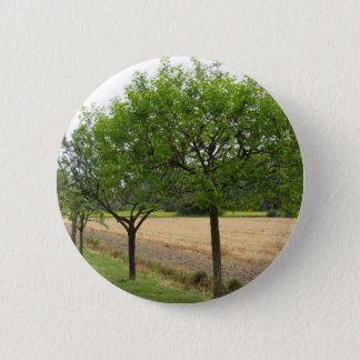 Fruit trees with green leaves in spring 6 cm round badge