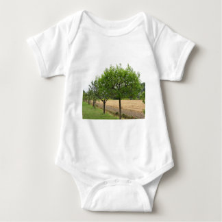 Fruit trees with green leaves in spring baby bodysuit