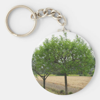 Fruit trees with green leaves in spring key ring
