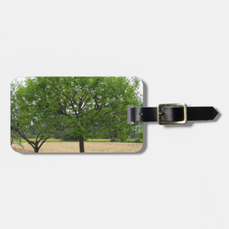 Fruit trees with green leaves in spring luggage tag