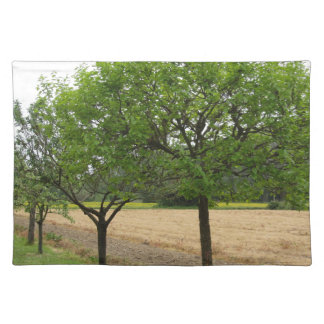 Fruit trees with green leaves in spring placemat