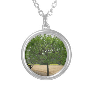 Fruit trees with green leaves in spring silver plated necklace