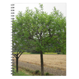 Fruit trees with green leaves in spring spiral notebook
