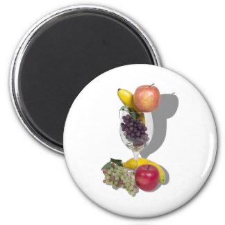 FruitCocktail060910shadows Fridge Magnets