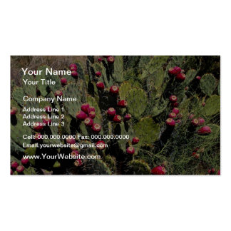 Fruited prickly pear cactus, Sonoran Desert Business Card Template
