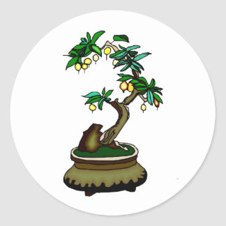 Fruiting Bonsai in Pot Bonsai Graphic Image Classic Round Sticker