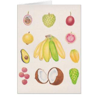 Fruits 2 card