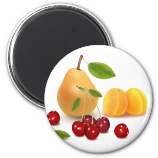 Fruits Fruits and Fruits Refrigerator Magnets