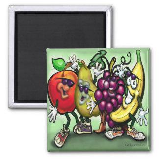 Fruits Magnets