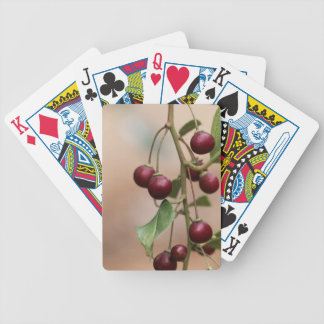 Fruits of a shiny leaf buckthorn bicycle playing cards