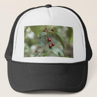 Fruits of a shiny leaf buckthorn trucker hat