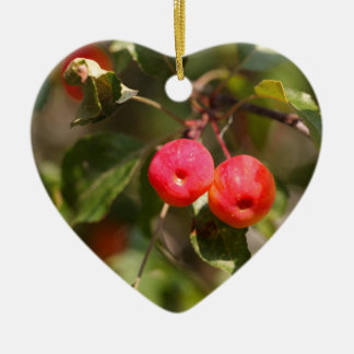 Fruits of a wild apple tree ceramic heart decoration